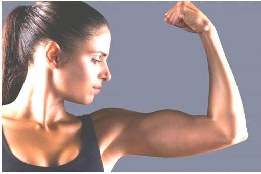 Formar músculo rapido